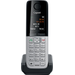 Gigaset - DECT 6.0 Cordless Expansion Phone for Gigaset C300 Series Phone Systems - Silver